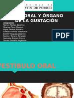 Expo Fosa Oral FINAL (1)