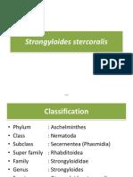 K2- Strongyloides Stercoralis