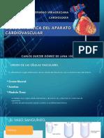 Biologia Basica Del Aparato Cardiovascular