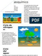 Ciclos Biogeoquímico