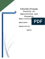Classification Sweet Potato Weevil