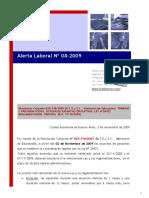 Alerta Laboral 08-2009 - Reglamentacion Ley de Pasantias 26427
