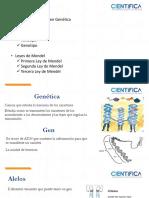 Genética y Leyes de Mendel