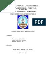 MONOGRAFÍA PENA.docx