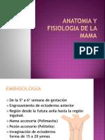 anatomia y fisiologia de la mama.pptx