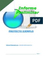 informe_preliminar.pdf