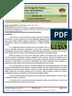 Gorosito Stevia.pdf