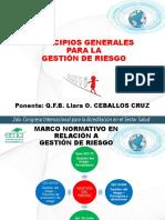 Principios_generales de Gestion de Riesgos