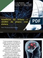 Slide 02 - Neurônios Da Leitura - o Cérebro Da Pessoa Com Dislexia