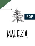 Maleza - Primera Edicion