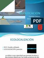 Ecolocación