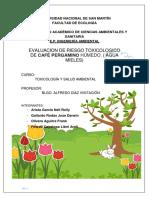 Evaluacion Riesgo Toxicologico AGUAS MIELES
