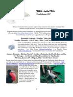 December  2008 White Tailed Kite Newsletter, Altacal Audubon Society