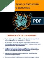 08Genomas_24948.pdf