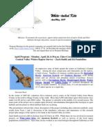 April 2009 White Tailed Kite Newsletter, Altacal Audubon Society