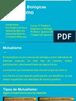 06mutualismo-160614154127