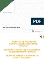 NAGAS, NIAS NGCG UPN OK.pdf