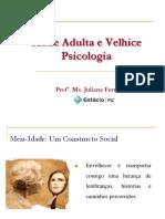 Cap. 15 e 16 - Idade Adulta e Velhice