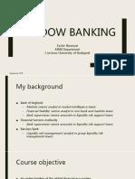 1. Baranyai Eszter_Shadow Banking (1)