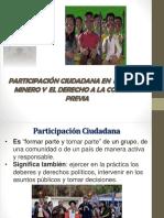 Particiación y Consulta