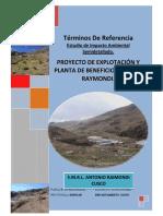 - TDR ANTONIO RAYMONDI.pdf