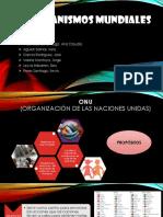 organismosmundiales-140505154027-phpapp01