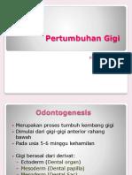 Pertumbuhan-Gigi.pptx