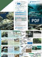 en_pamphlet(1).pdf