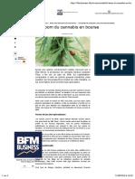 Le Boom Du Cannabis en Bourse