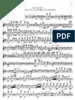 Schubert-Sym8.Flute.pdf
