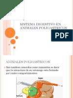 SISTEMA DIGESTIVO EN ANIMALES POLIGASTRICOS.pptx