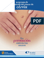 Programa Prevencion Cancer Cervix 2004(1)