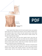 anatomi hernia.docx