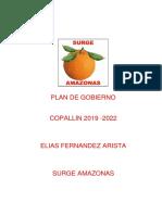 Plan de Gobierno Amazonas 9