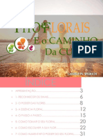 Manual Do Seu Fitofloral Final