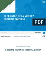 Registro de La Mype