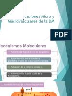 Complicaciones Micro y Macrovasculares de La DM