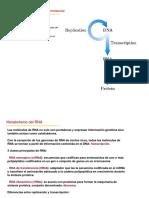 modulo III RNA transcripcion_resumen 2018.pdf