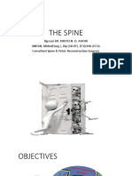 THE SPINE-b-1.pptx