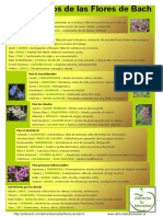 Bach resumen.pdf