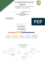 Farmacia Hospitalaria Unidad 1 Actividad 1 Mapa Mnsf