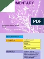 INTEGUMEN-PD-2013 (1).pdf