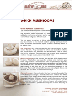 Which Mushroom?