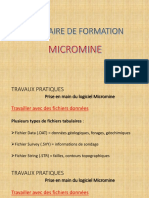 Micromine Formation 4