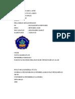 Novia Rahmawati.pdf