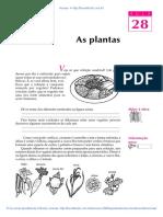 28-As-plantas.pdf