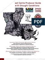 louisiana beef cattle producer guide to coping with drought conditions