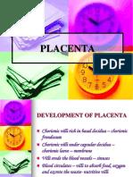 Development of Placenta