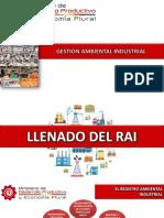Presentacion Del Llenado Del Rai (1)