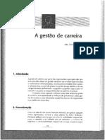 Livro_As Pessoas Na Organização_Todos Capitulos
